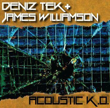 Deniz Tek Acoustic KO Cover.jpg