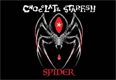 Chocolate Starfish Spider