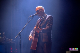 Paul Kelly Groovin The Moo Adelaide - Adam Schilling (1)