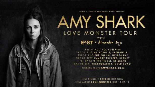 Amy Shark Tour Banner