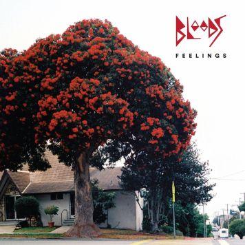 Bloods - Feelings Album Cover.jpeg
