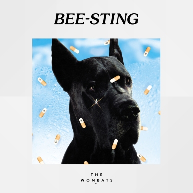 The Wombats - Bee-Sting