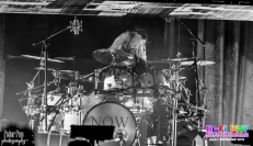 shania drums 4
